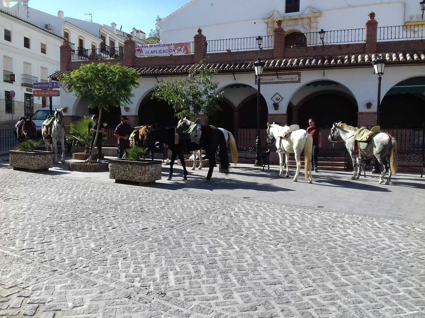 Horse Riding holiday spain Andalucia Europe Horse riding Holiday spain horse riding