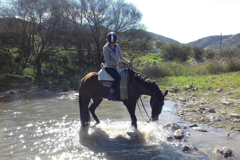 Horse Riding El Chorro - Horse riding Holiday  Malaga Andalucia SpainFacebook reviews