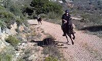 Spain Holidays El Chorro Malaga Andalucia Spain Europe Horseback Riding Holiday Horse Trekking El Chorro Andalucia Spain