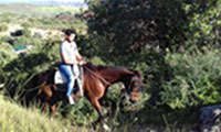 Horse Riding Spain - Horse Riding Holiday Riding - Horse Trekking Holidays Spain