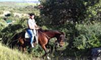 Spain Horse Riding Holiday Riding El Chorro Malaga Andalucia Spain Europe Horse Trekking Holidays Andalucia Spain