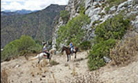 Horse Riding El Chorro - Horse Riding El Chorro Malaga Andalucia Spain Europe Holiday Riding - Horse Trekking Holidays El Chorro Malaga Andalucia Spain