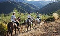 Horse Riding El Chorro Malaga Andalucia Spain Europe Holiday Riding Holidays near Malaga Andalucia Spain