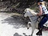 Malaga Andalucia Spain Horse Riding El Chorro - Riding Horses Holiday El Chorro horse trekking